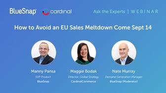 PSD2 Webinar: How to Avoid an EU Sales Meltdown Come Sep  14